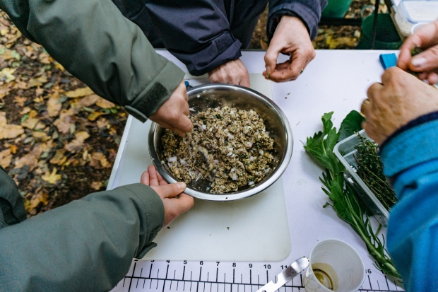 Foraging course - making acorn burgers